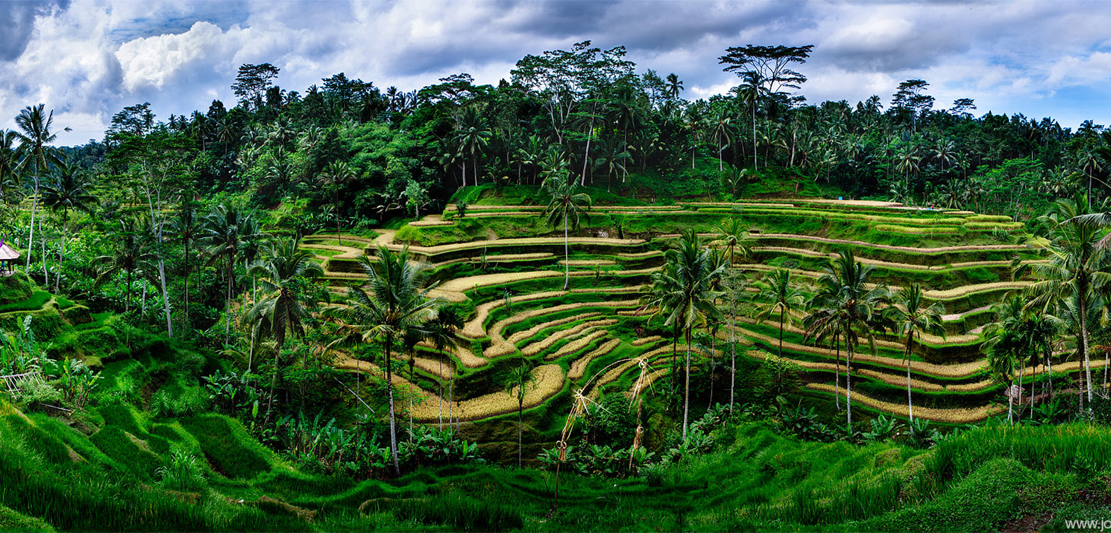 Discover Bali & Beyond in Indonesia Archipelago